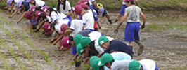 農林水産業対策