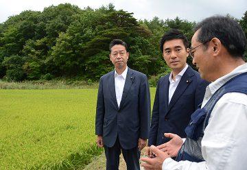 営農再開をめざす松本さんから説明を聞く矢倉氏と伊藤議員=16日 福島・葛尾村