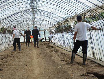 農作業に汗を流す訓練生