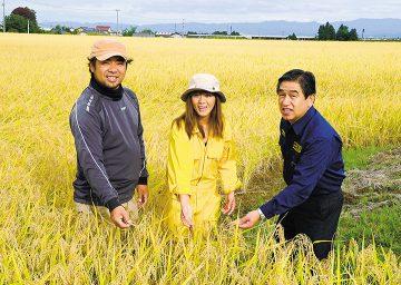 収穫間近のコメについて話す若松県代表(右)と加藤夫妻=17日 福島市