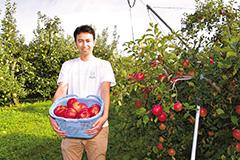 「福島から農業の魅力を発信したい」。大野さんが栽培したリンゴには、地域への思いが込められている=18日 福島・石川町