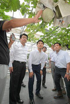メロンの水耕栽培について話を聞くこいそ都議、矢倉政務官、稲津氏ら=21日 東京・町田市