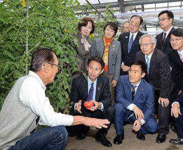 都市農業の振興めざす