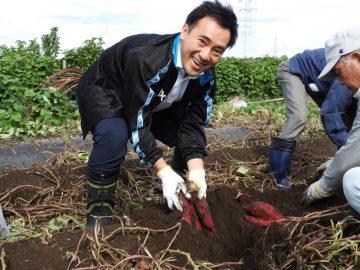 三芳町で芋掘り